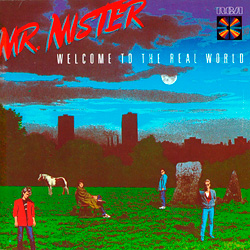 Mr. Mister「Welcome to the Real World」